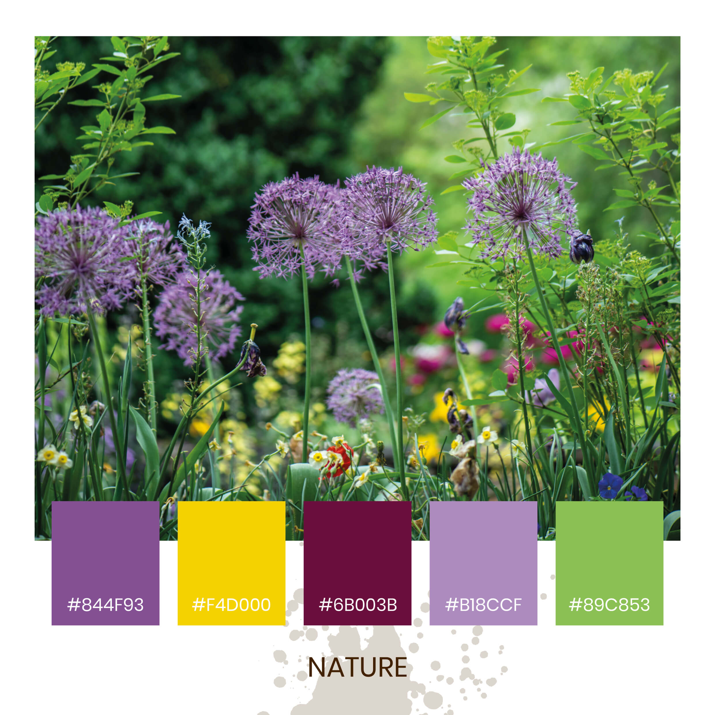 Colour Inspiration - Nature